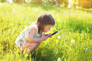 Little child looking through a magnifying glass on dandelion flower in the grass